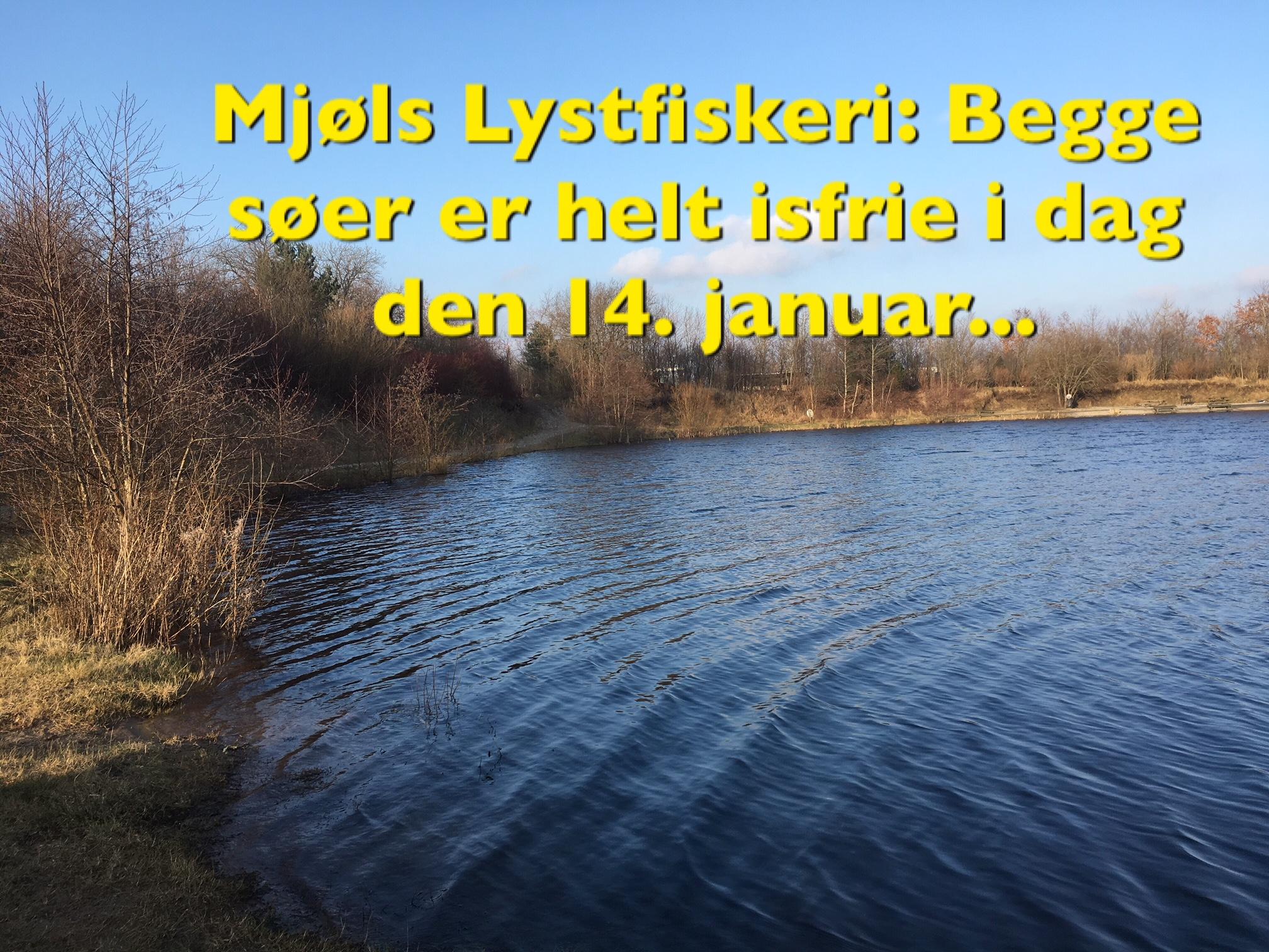 FANG DIN FISK TIL MIDDAG i Mjøls Lystfiskeri