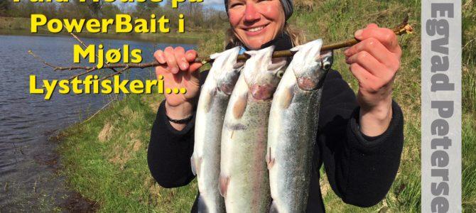 Full House i Mjøls Lystfiskeri