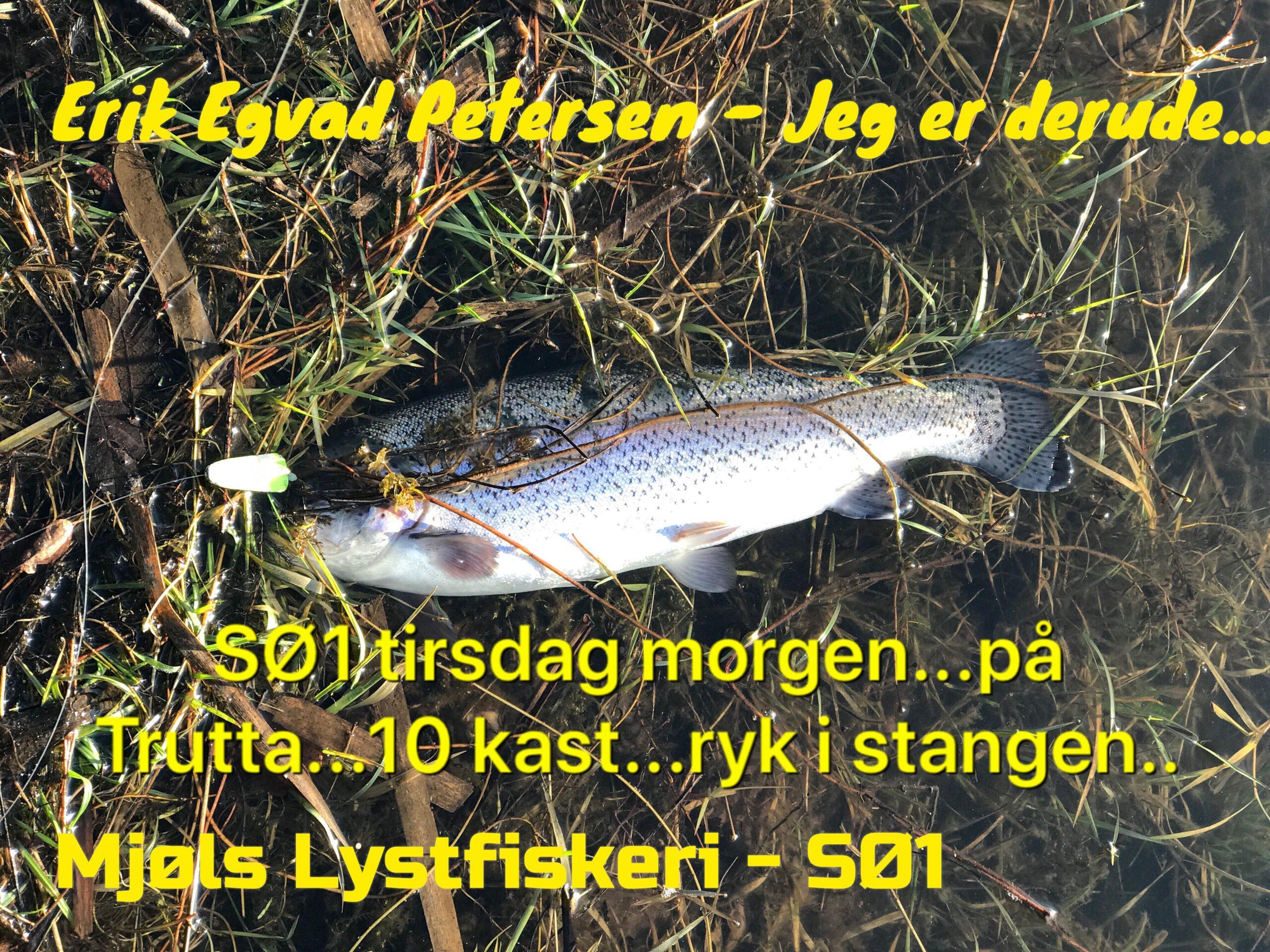 SE VIDEO – Mjøls Lystfiskeri: De huggede også tirsdag morgen
