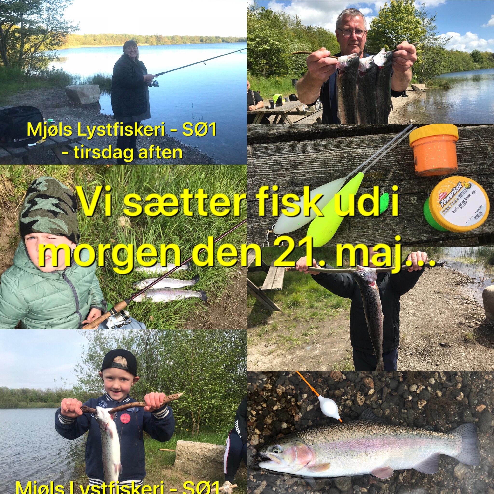 Kristi Himmelfartsdag går helt i fisk i Mjøls