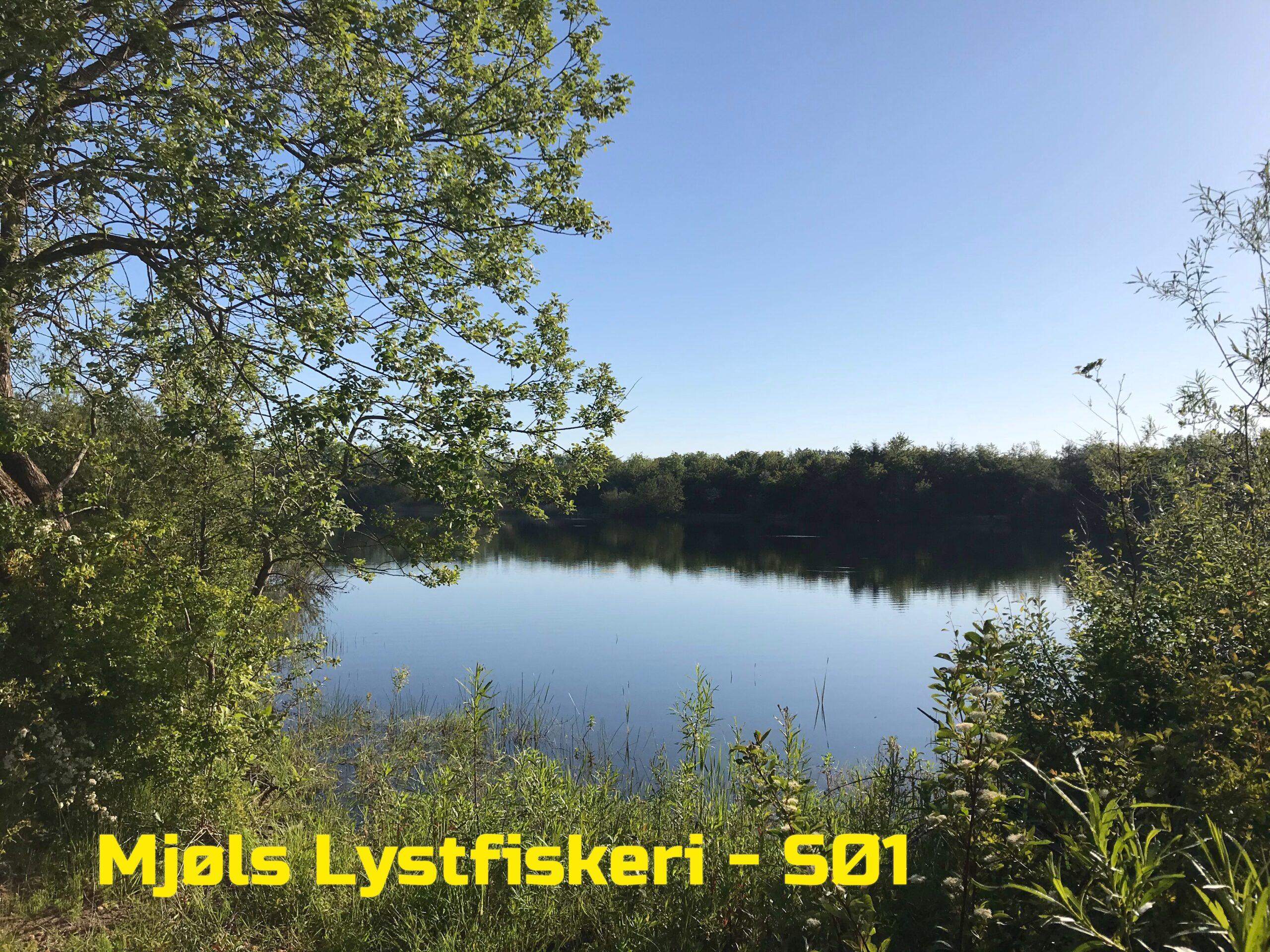 Mjøls Lystfiskeri – Pinsevejr i topklasse
