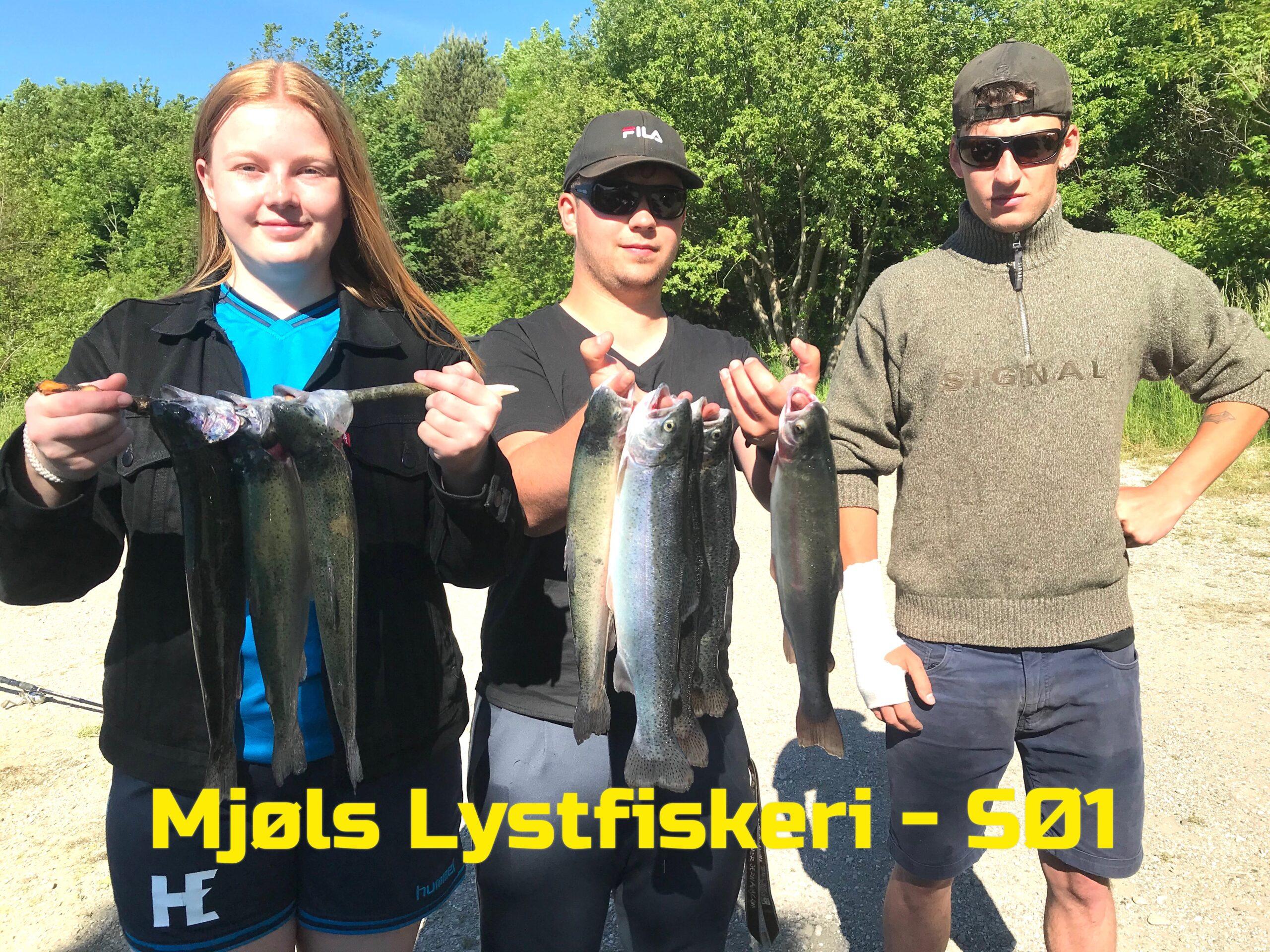 Mjøls Lystfiskeri – De fanger ørreder i Pinsen