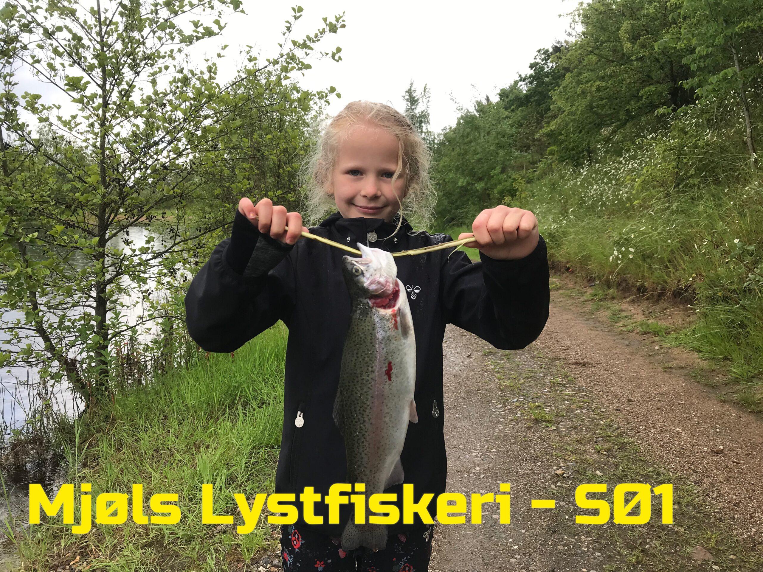 De hugger i Mjøls Lystfiskeri på Grundlovsdagen