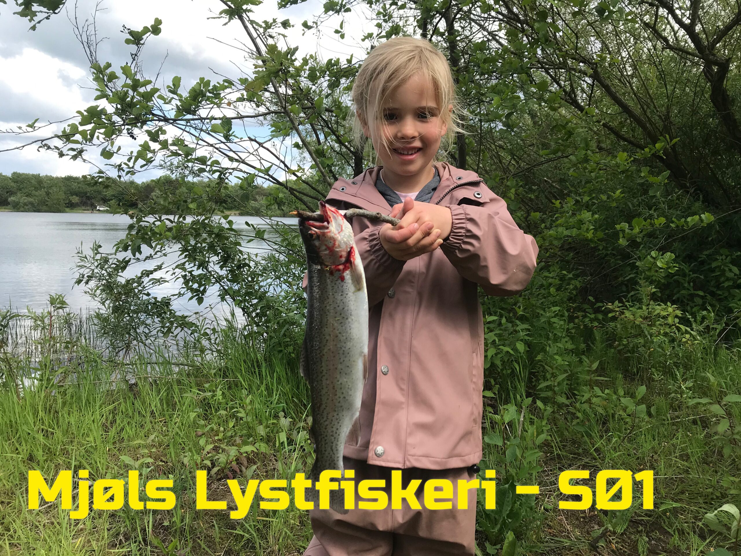 Unge Vigga fik fisk på krogen i Mjøls