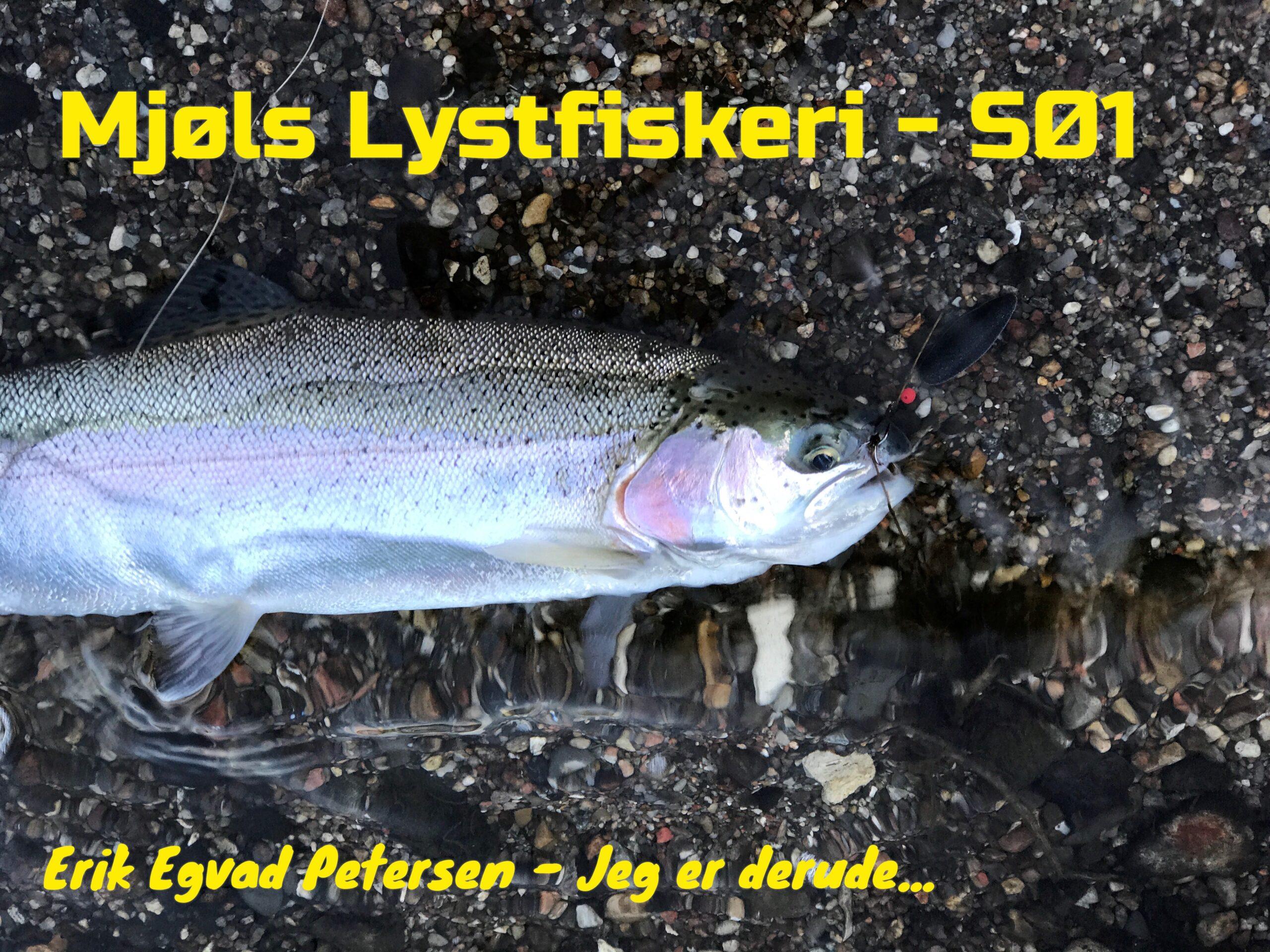 Søndagen starter godt i Mjøls Lystfiskeri SØ1