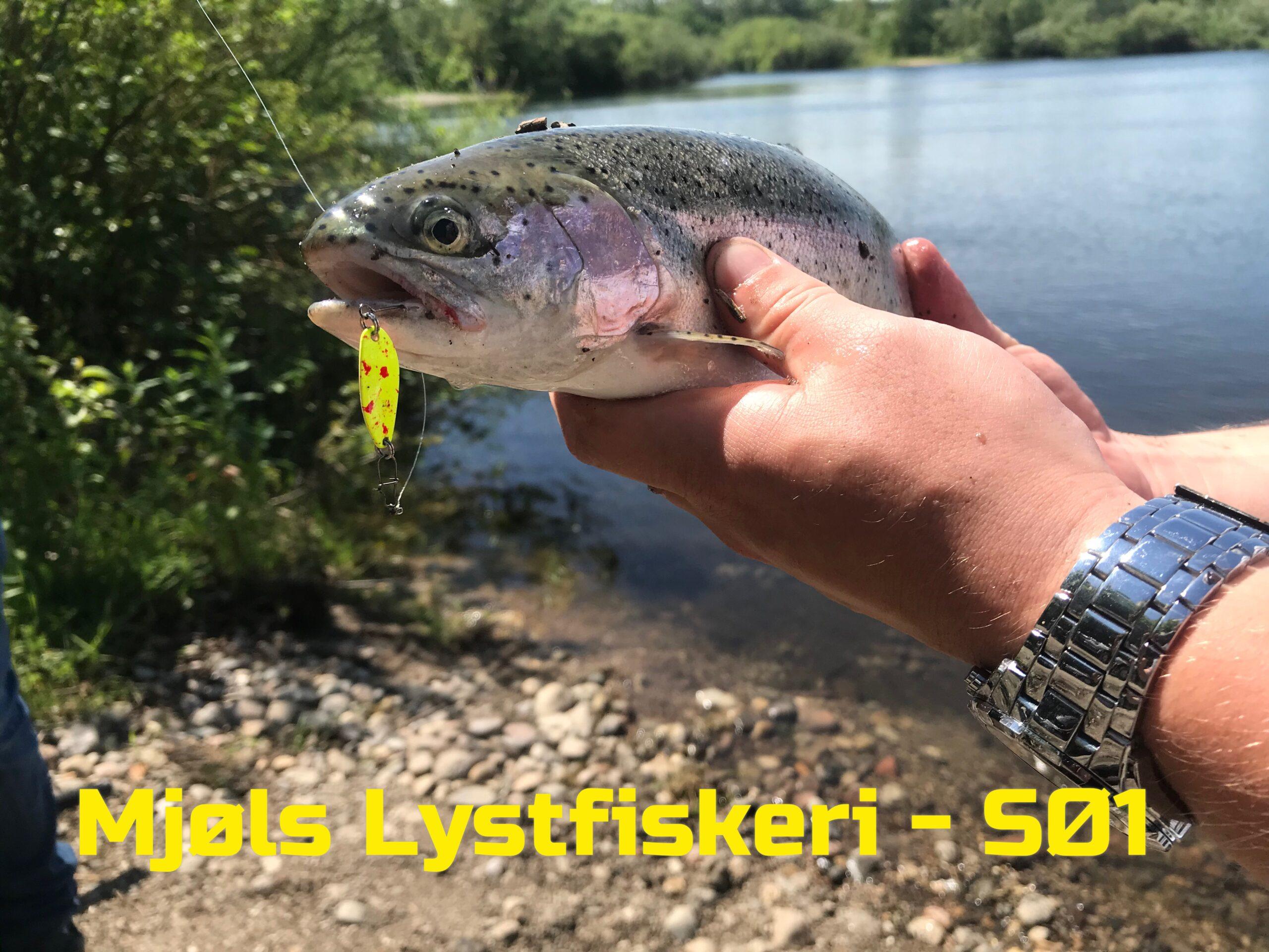 Mjøls Lystfiskeri: Små blink i krasse farver