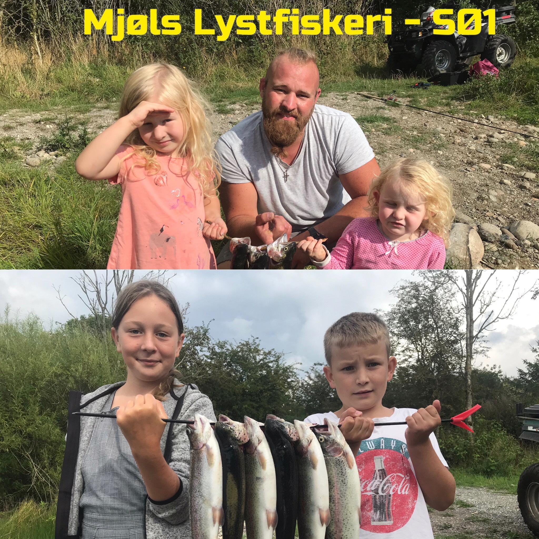 Mjøls Lystfiskeri – de hugger helt vildt i SØ1….