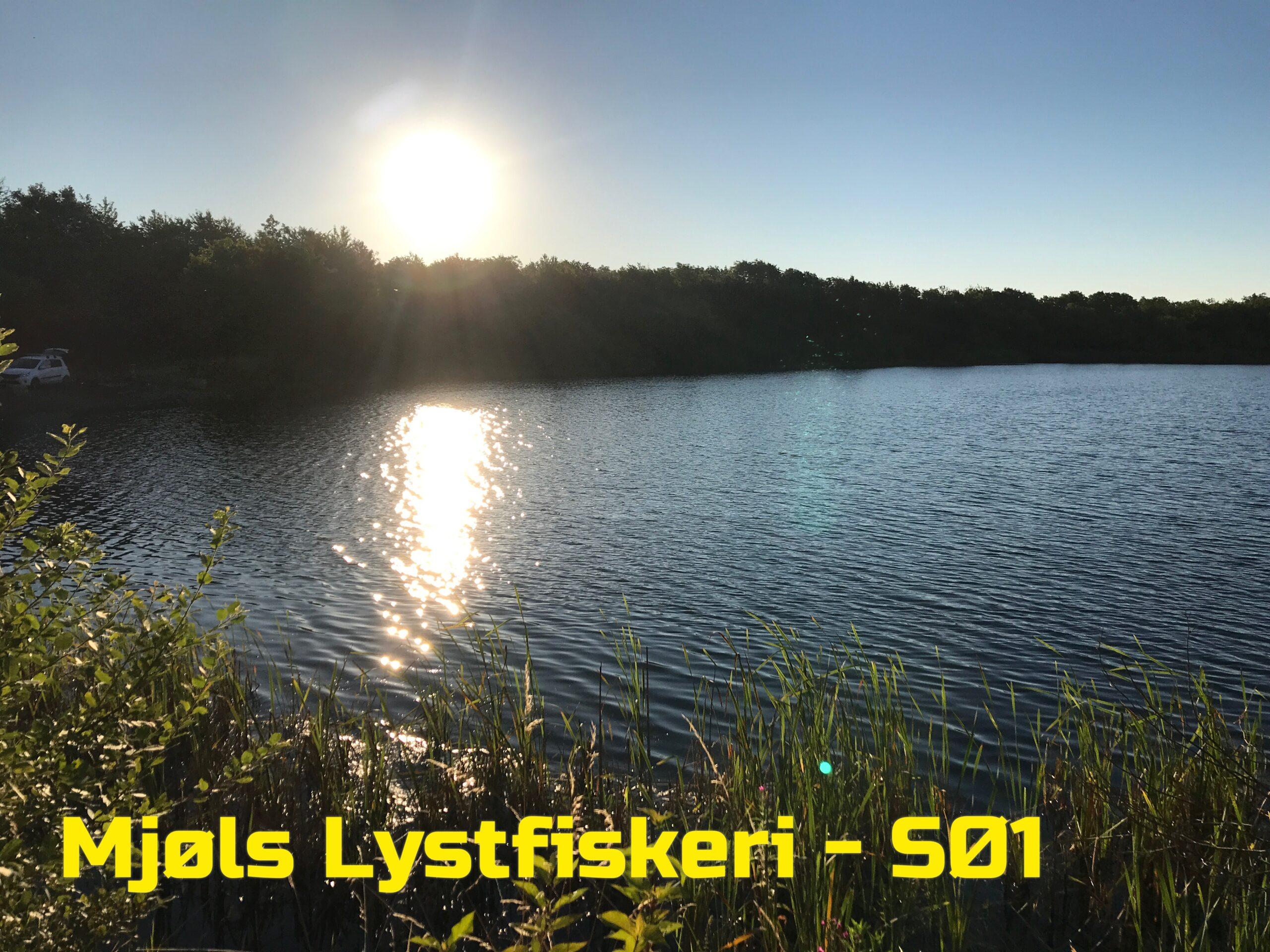 Fantastisk vejr – lige til en fisketur i Mjøls Lystfiskeri