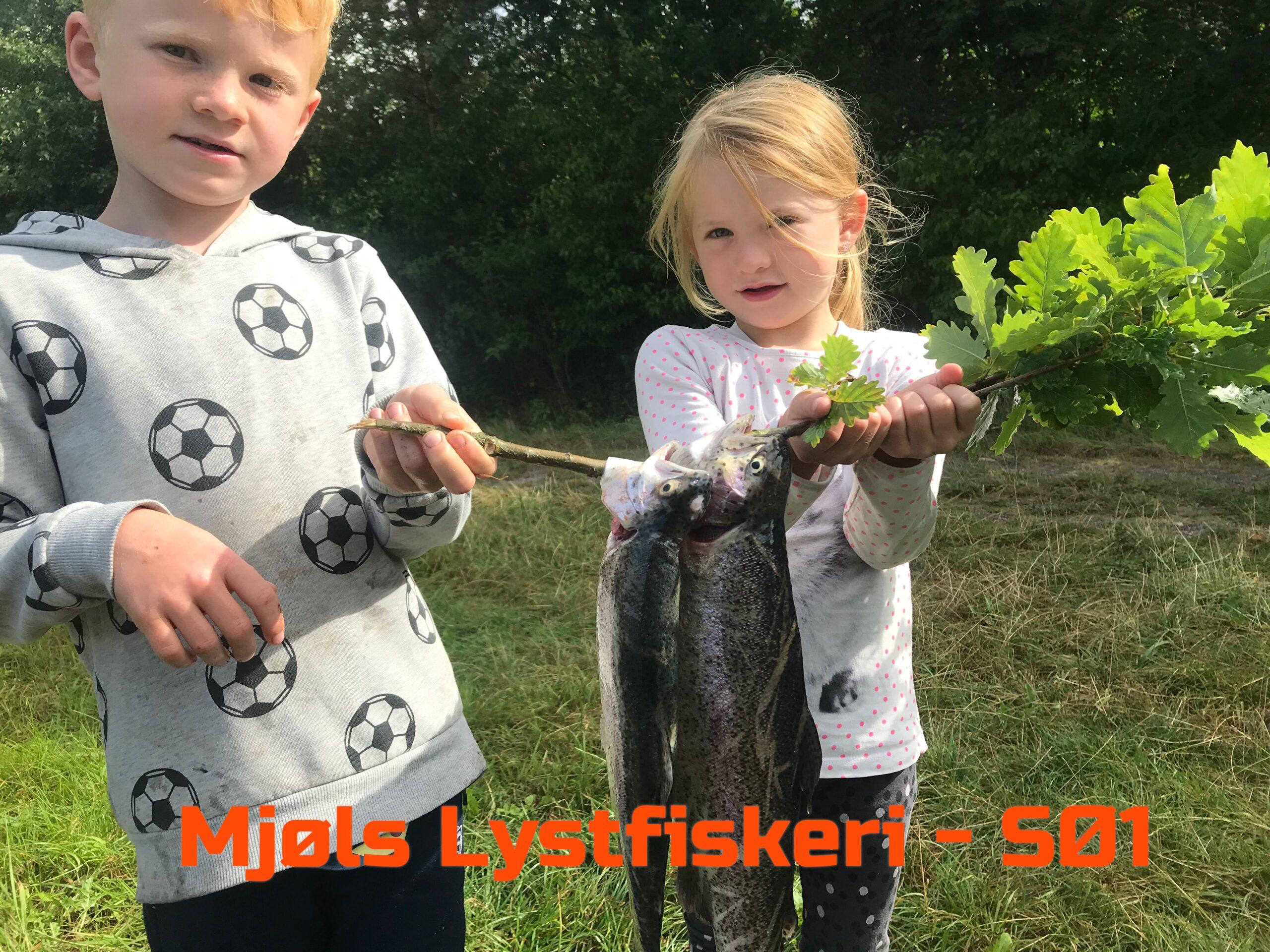 Mjøls Lystfiskeri: Unge lystfiskere med regnbueørreder