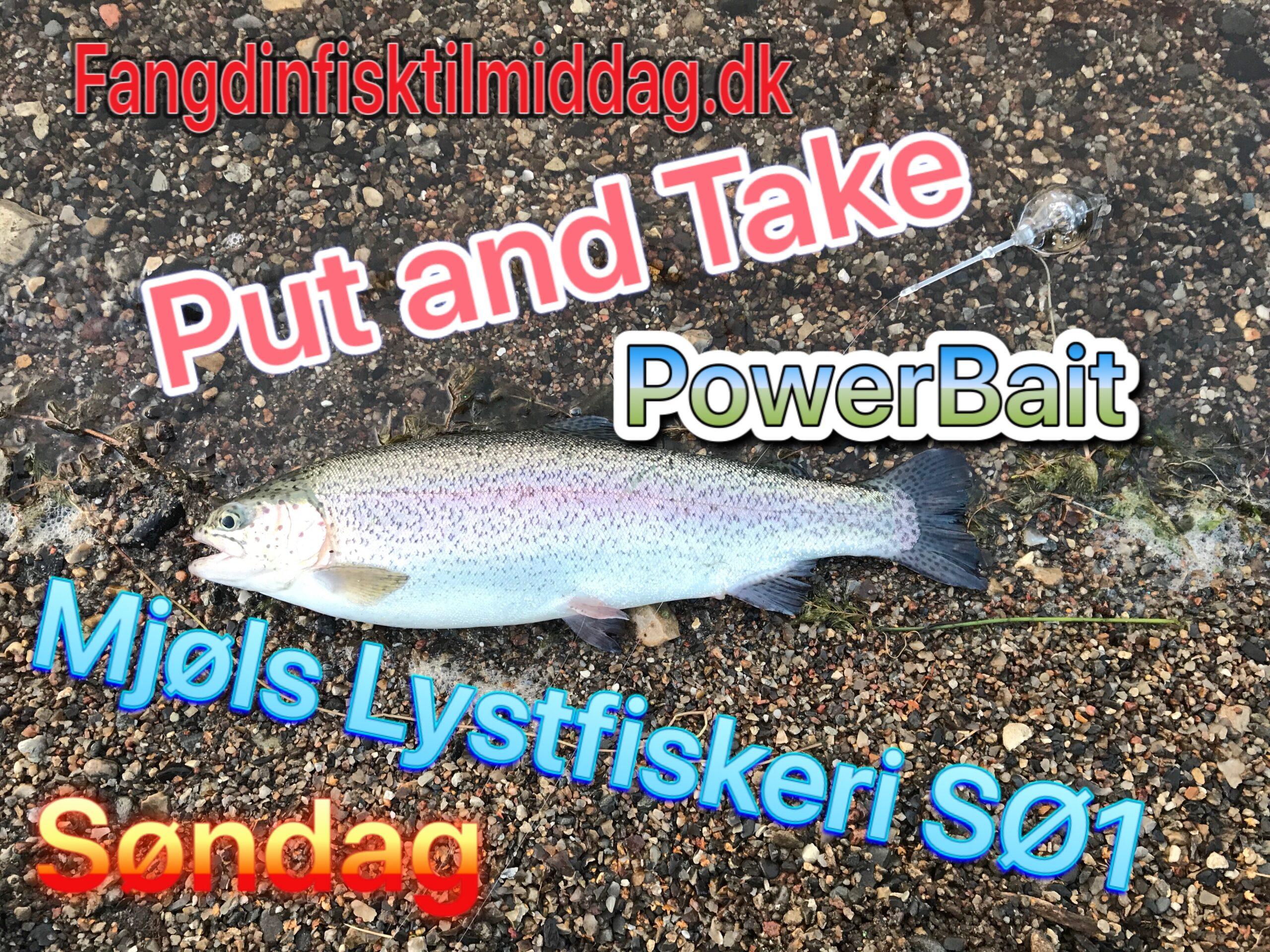 SE VIDEO – Mjøls Lystfiskeri: De hugger søndag morgen
