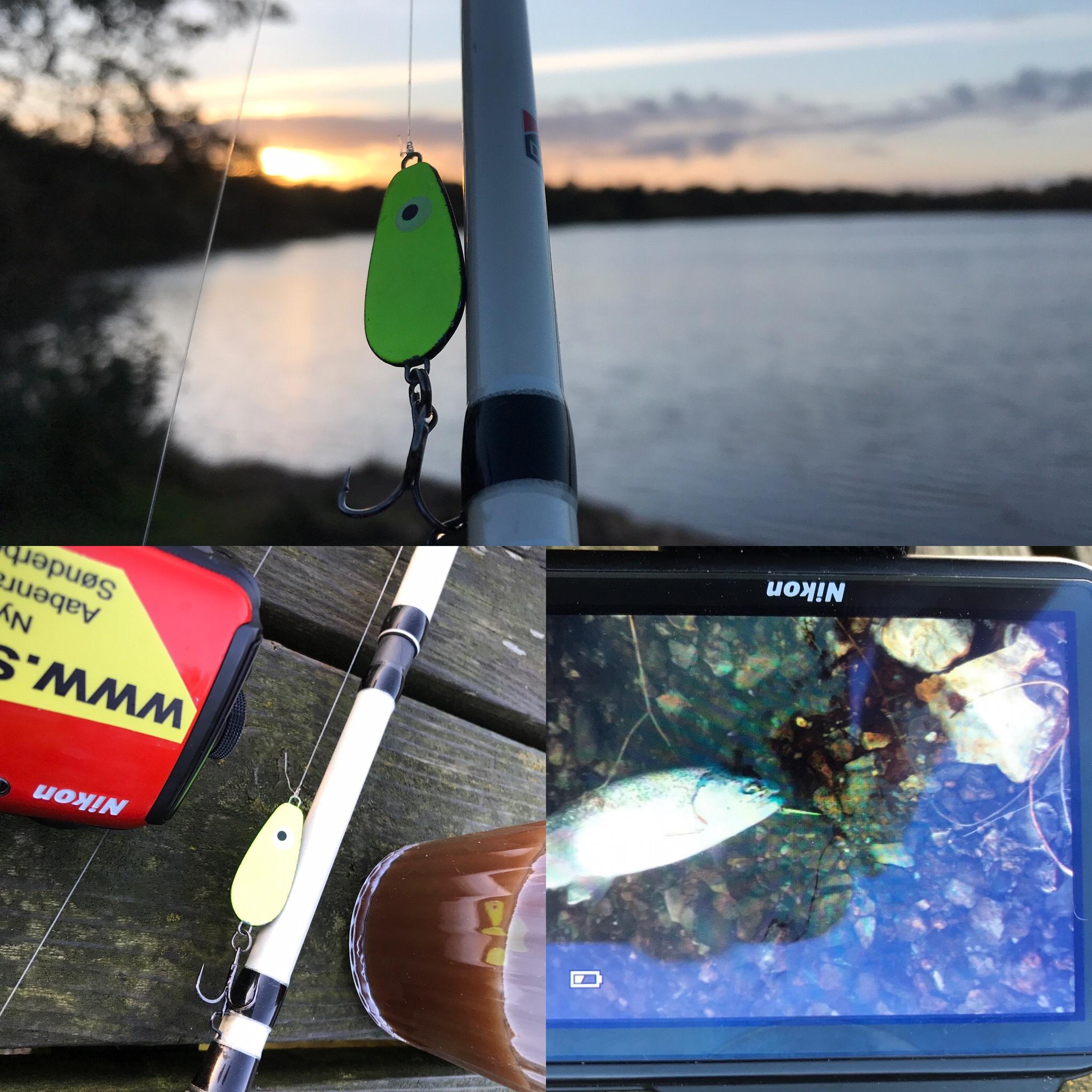 Mjøls Lystfiskeri – SØ1 – lørdag morgen den 24. oktober