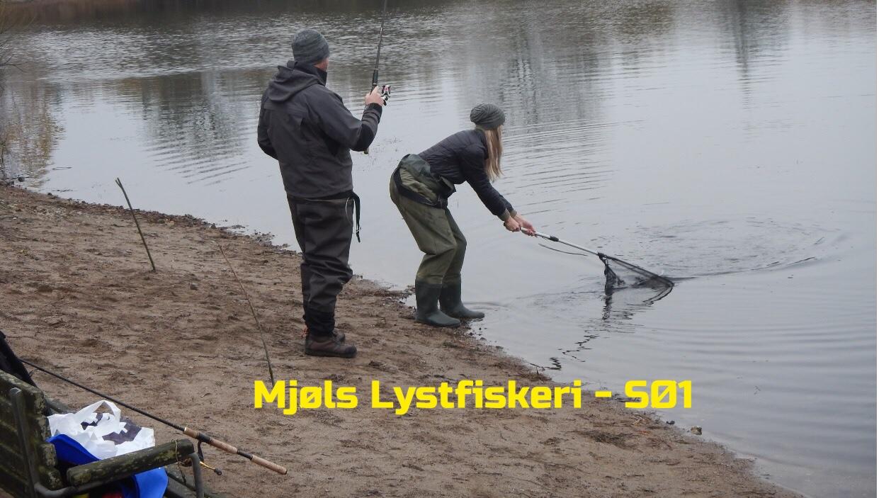 Mjøls Lystfiskeri: Kystturen blev til en fangstoplevelse i SØ1 i dag fredag ved middagstid