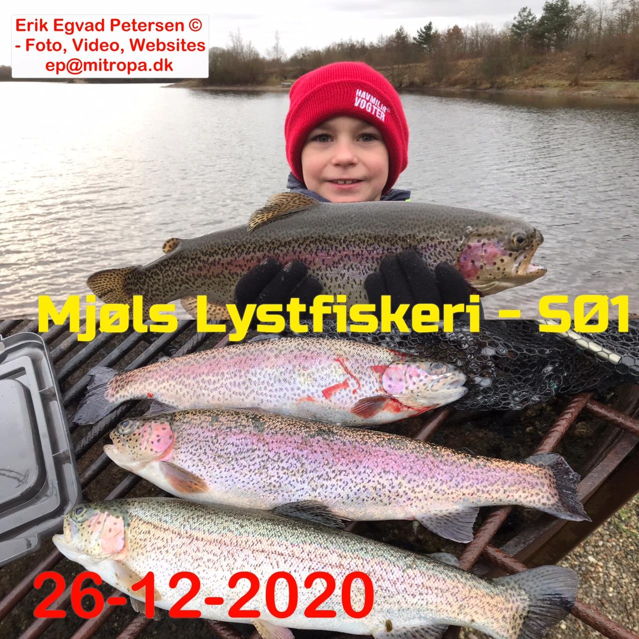 Mjøls Lystfiskeri: Frederik og hans far fik fisk i første kast