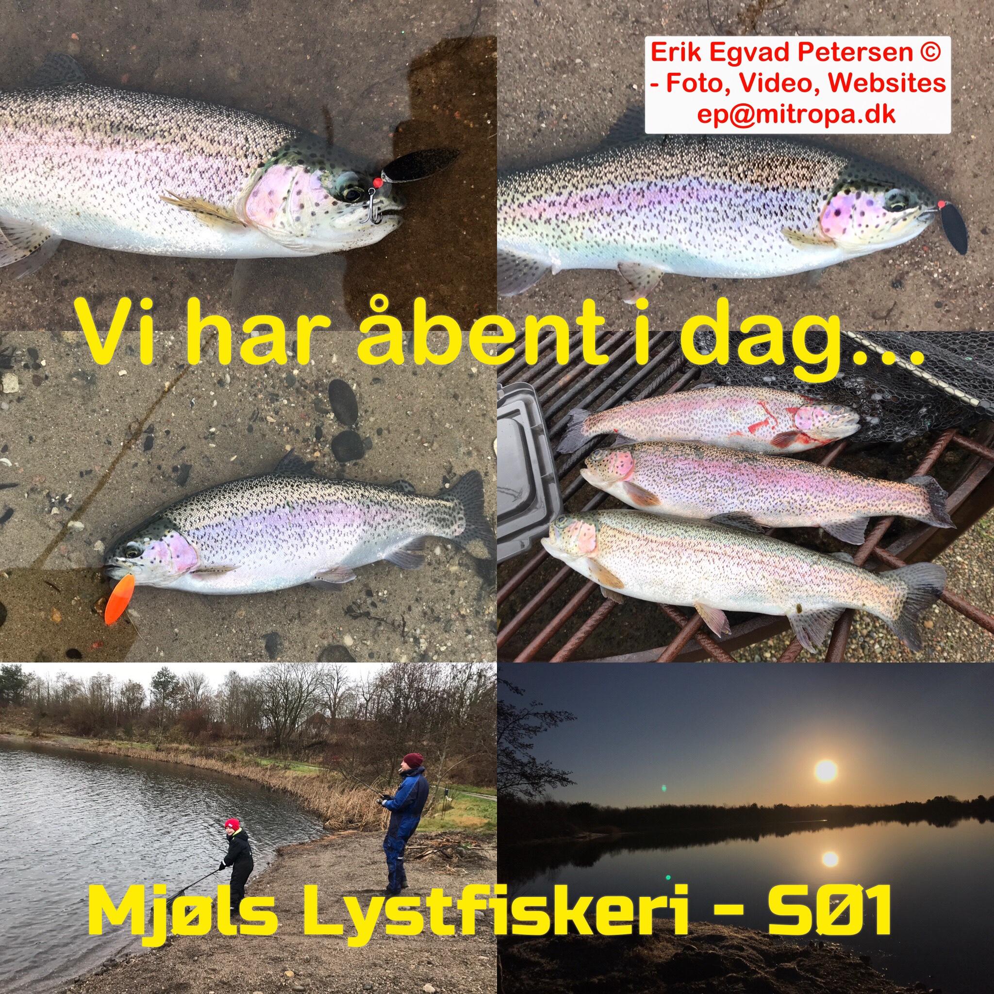 Mjøls Lystfiskeri: Vi har åbent i dag – både SØ1 og SØ2