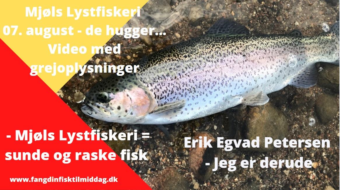 SE VIDEO – Mjøls Lystfiskeri – SØ1 – Lørdag morgen med grej-oplysninger