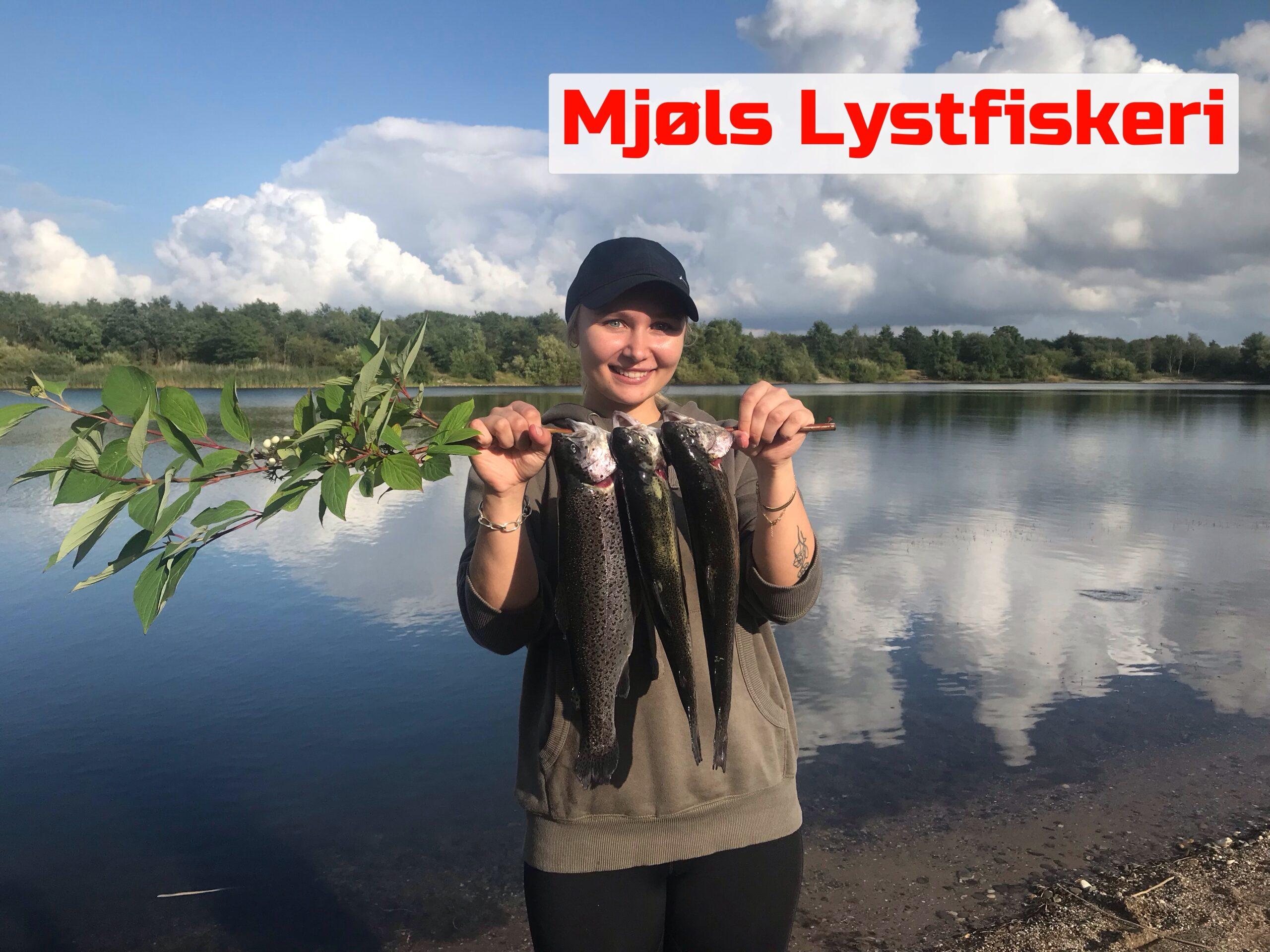Flittig lystfisker fangede ørrederne på PowerBait