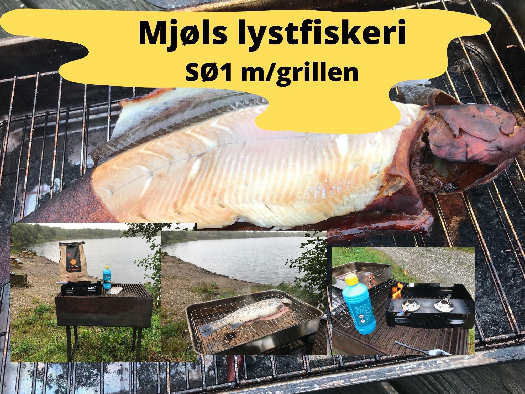 SE VIDEO – Mjøls Lystfiskeri – SØ1 lørdag morgen med rygeovn og Trutta