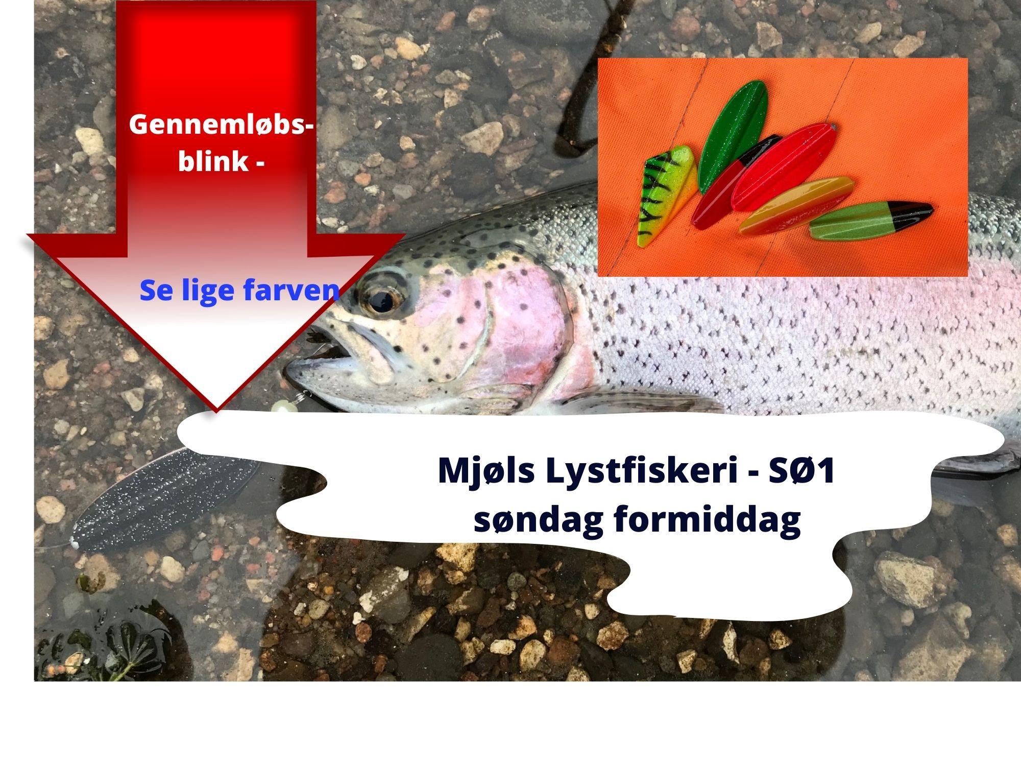 SE VIDEO – Mjøls Lystfiskeri – Søndag formiddag hugger de på gennemløber